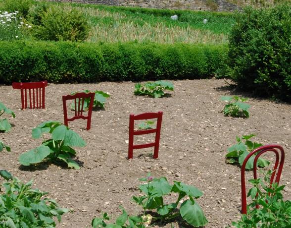 Graines de chaises